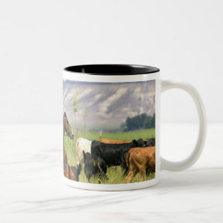 A rancher on horseback during a cattle roundup Two-Tone coffee mug