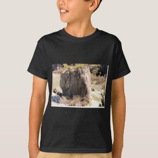 A Rock in Idaho T-Shirt