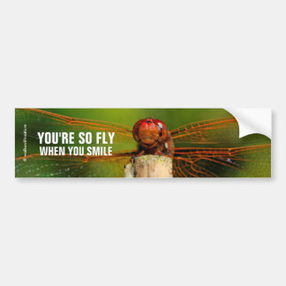 A Smiling Red Dragonfly Bumper Sticker