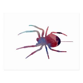 A spider postcard