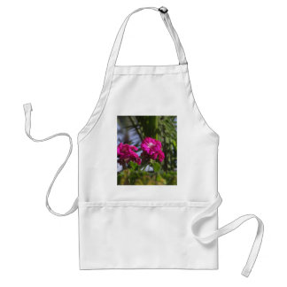 A touch of nature standard apron