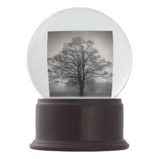 A Tree in the Fog Snow Globes
