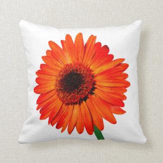 A Vivid Orange Gerbera Daisy Pillow