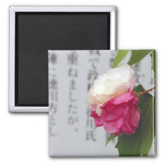A white, a pink flower and Japanese characters Square Magnet