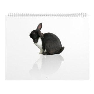 A Year of Rupert Calendar