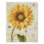A Yellow Sunflower Poster