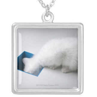 A Young Kitten Stretches His Head Down a Square Silver Plated Necklace