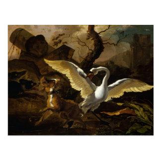 Abraham Hondius - A Swan Enraged Postcard