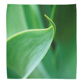 Abstract Leaf Bandana