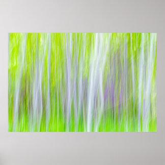 Abstract of Aspen Trees | Yakima River Trail, WA Poster