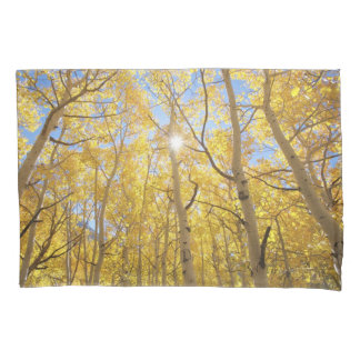 Abstract of Gilia Amidst Wildflowers | California Pillowcase