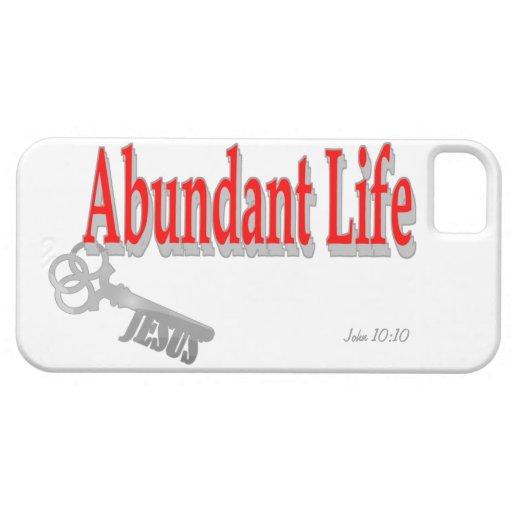 Abundant Life: The Key - v1 (John 10:10) iPhone 5 Covers