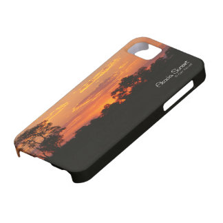 Acacia Sunset iPhone 5 Covers