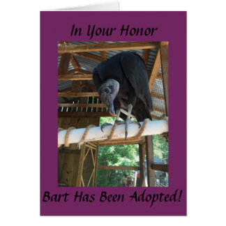Adopt Bart the Black Vulture- In someone's honor! Greeting Card