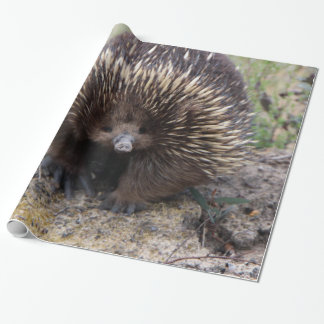 Adorable Australian Echidna Wrapping Paper