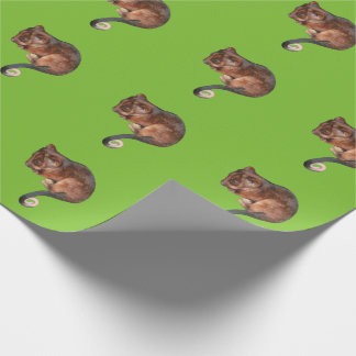 Adorable Baby Ringtail Possum in Australia Wrapping Paper