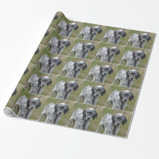 Adorable Black and White English Setter Wrapping Paper