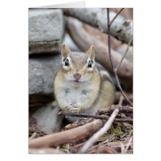 Adorable Chipmunk Spencer Card
