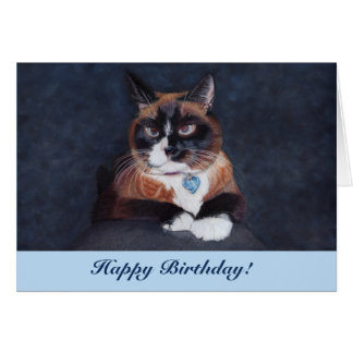 Adorable Cross Eyed Cat Card