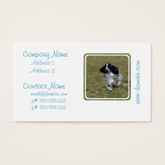 Adorable English Cocker Spaniel Business Card