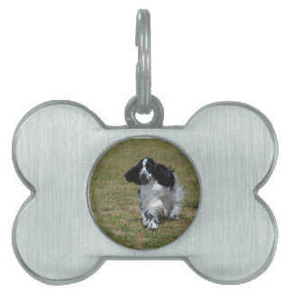 Adorable English Cocker Spaniel Pet Tag