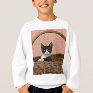 Adorable kitten in basket sweatshirt
