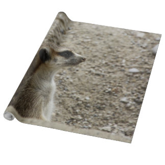 Adorable meerkat wrapping paper