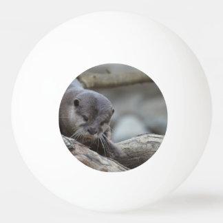 Adorable Otter Ping Pong Ball
