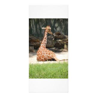 Adorable Sitting Giraffe Personalized Rack Card