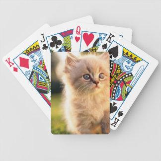 Adorable Stop Motion Kitten Poker Deck