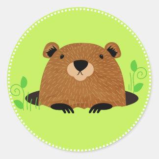 Adorable Woodland Groundhog Classic Round Sticker