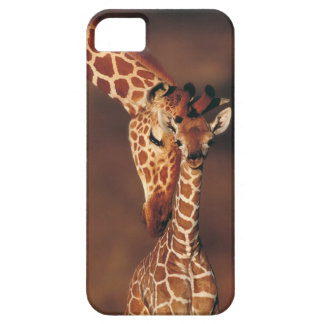 Adult Giraffe with calf (Giraffa camelopardalis) Case For The iPhone 5