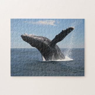 Adult Humpback Whale Breaching Jigsaw Puzzle