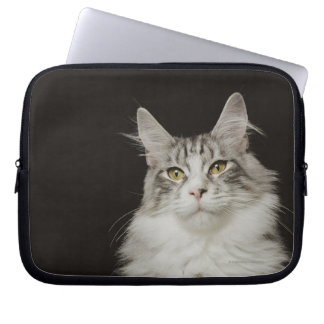 Adult Maine Coon Cat Laptop Sleeve