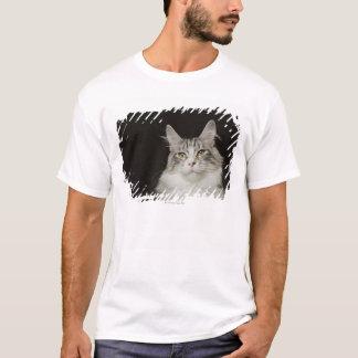 Adult Maine Coon Cat T-Shirt