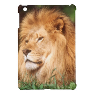 Adult male Lion iPad Mini Case