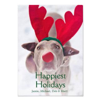 Adult Weimaraner dog wearing red antler headband Card