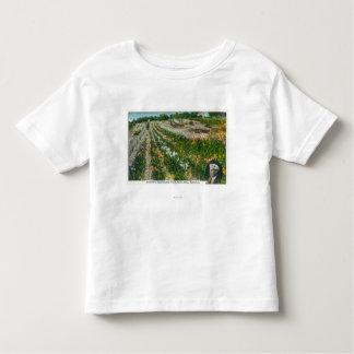 Aerial View of Burbanks Experimental Farm Tee Shirt