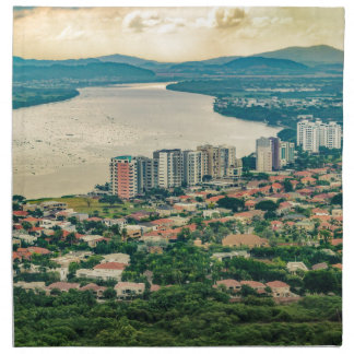 Aerial View of Guayaquil Outskirt from Plane Napkin