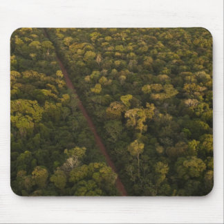 Aerial View of rainforest. Iwokrama Reserve, 2 Mouse Pad