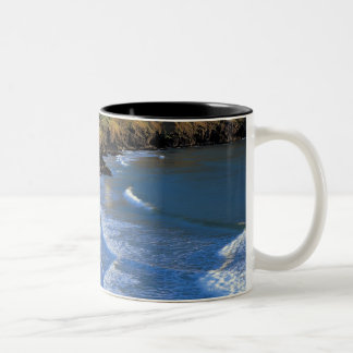 aerial view of waves washing up against a Two-Tone coffee mug