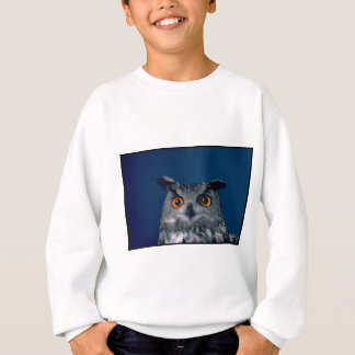 Affordable Owl Holiday Gift Sweatshirt