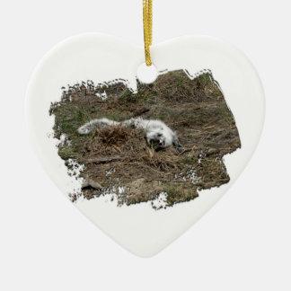AFOTG Arctic Fox on the Ground Christmas Ornament