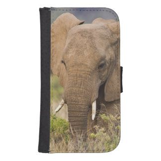 Africa. Kenya. Elephant at Samburu NP. Samsung S4 Wallet Case