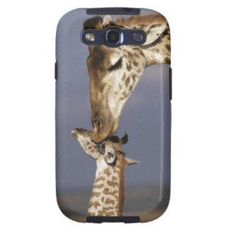 Africa, Kenya, Masai Mara. Giraffes (Giraffe Galaxy SIII Covers