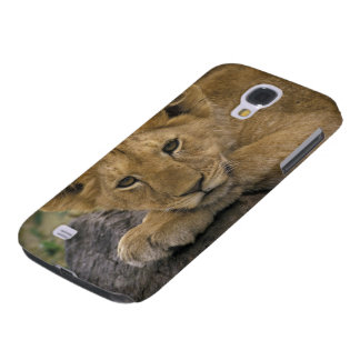 Africa, Kenya. Portrait of a lion. Galaxy S4 Case