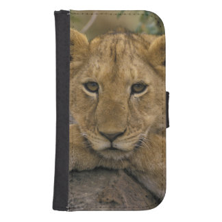 Africa, Kenya. Portrait of a lion. Samsung S4 Wallet Case