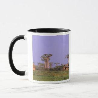 Africa, Madagascar, Morondava. Baobabs Mug