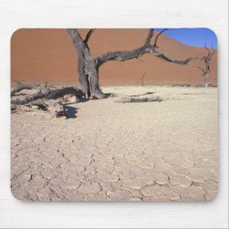 Africa, Namibia, Sossusvlei Region. Sand dunes Mouse Pad