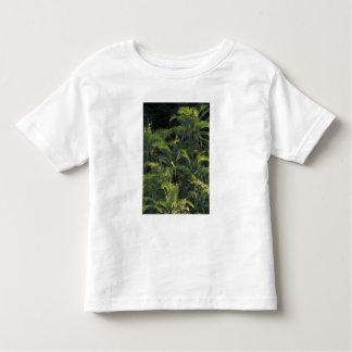 Africa, Zambia, Mosi-Oa-Tunya National Park, Tee Shirts
